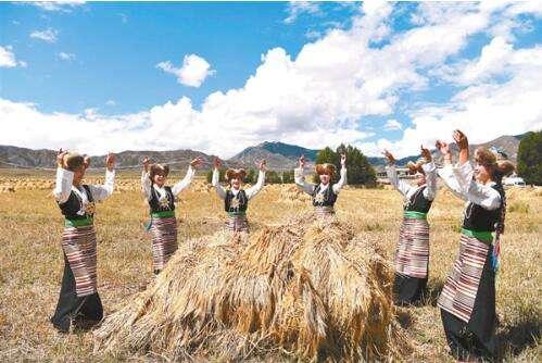 西藏 丰收节.jpeg